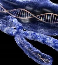 screening for livmoderhalskræft